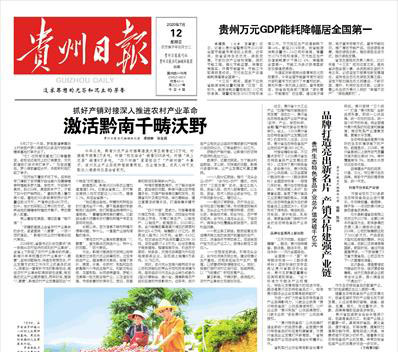 贵州日报登报中心