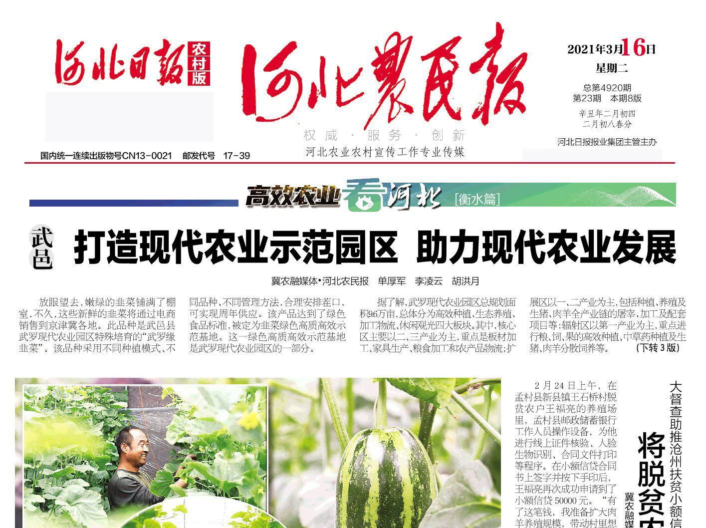 河北农民报社登报热线