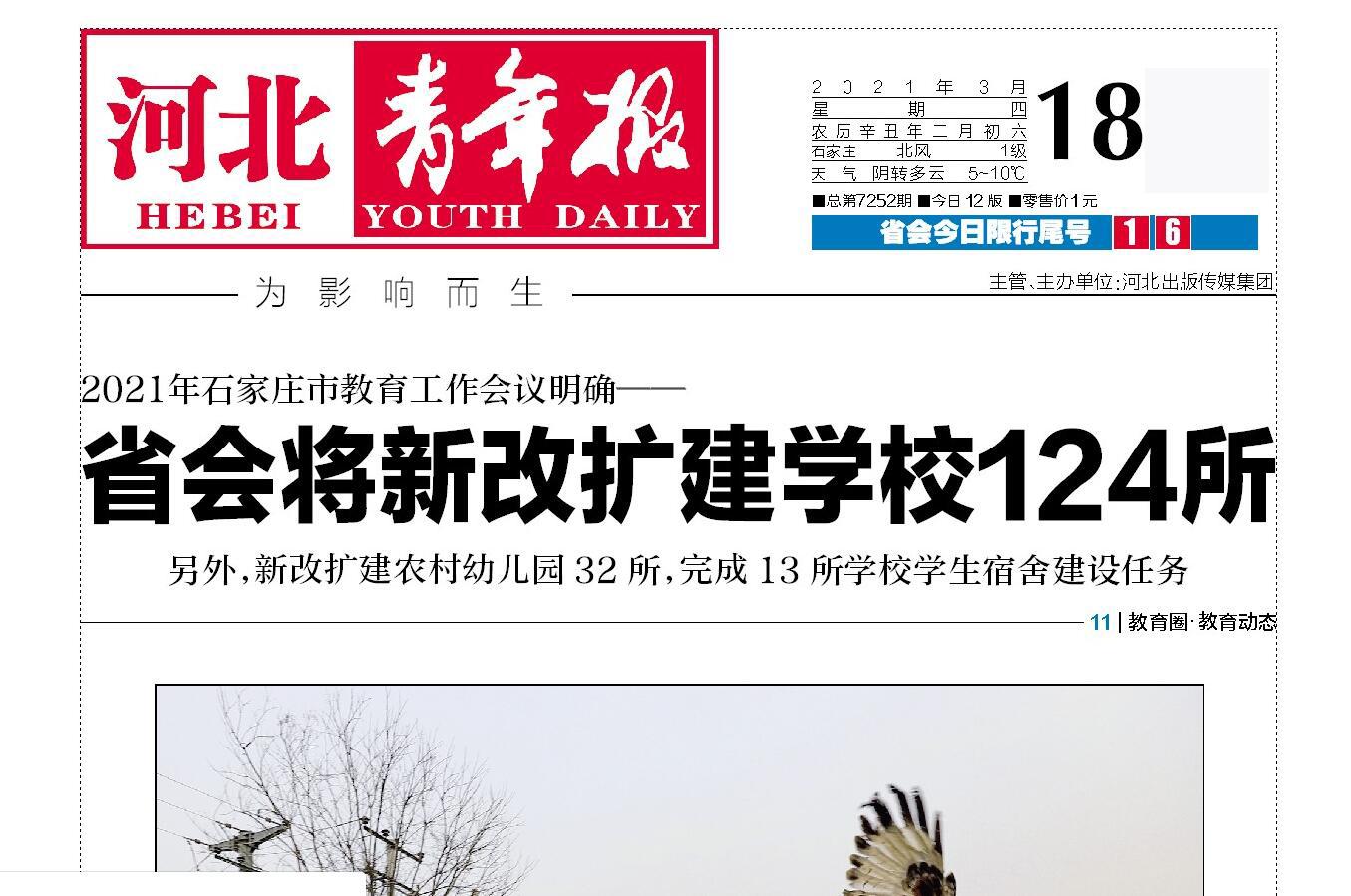 河北青年报报社广告部登报热线