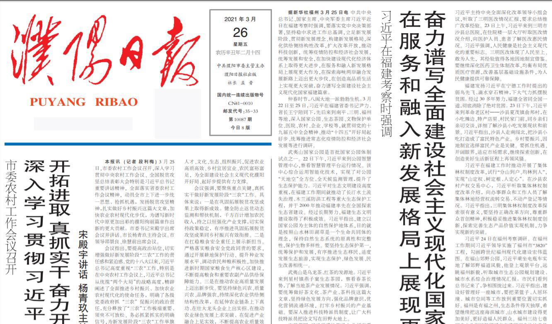 濮阳日报社登报电话